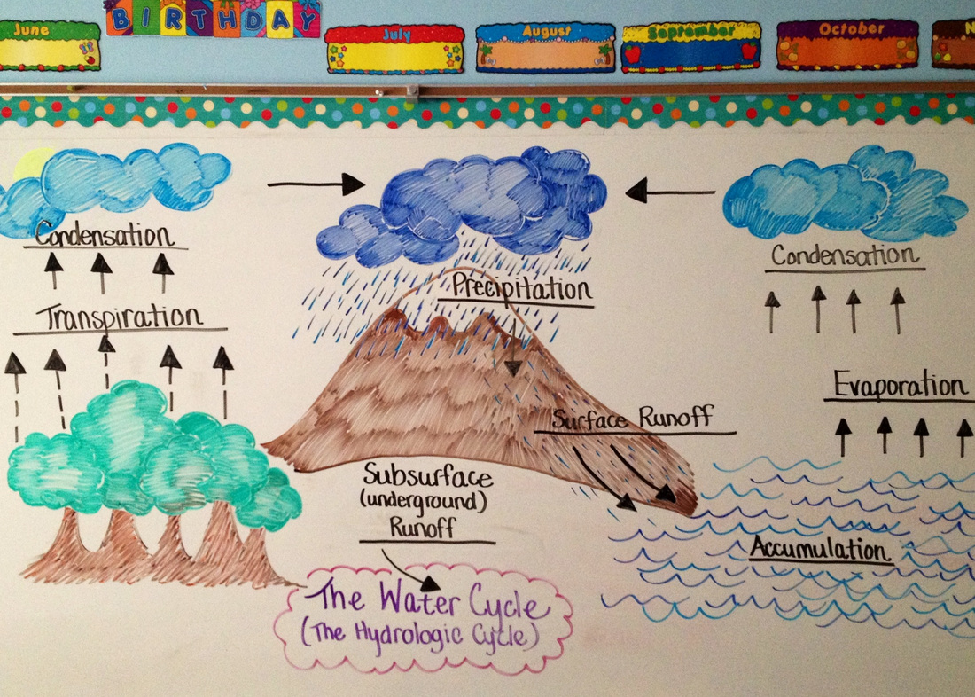 hour delay science class miss griffin s th grade welcome to the water cycle